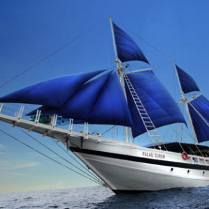 10 Nights Diving Aboard Palau Siren